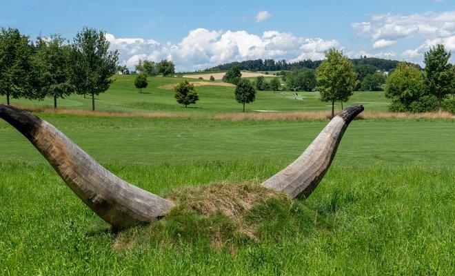 Skulptuerenweg im Golfpark Oberkirch