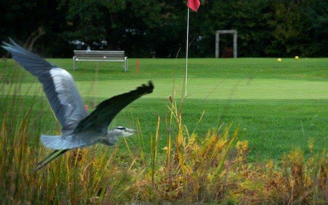 Golf und Ökologie